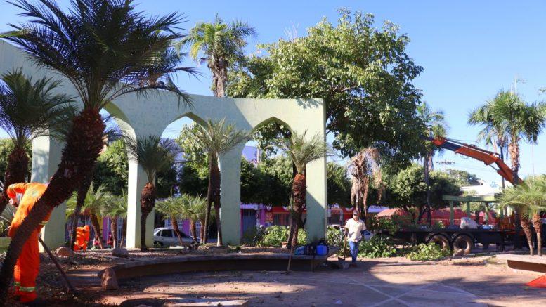 Secretaria de Urbanismo e Paisagismo faz limpeza geral e poda de árvores na praça Sebastião Júnior